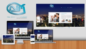 Website Projects